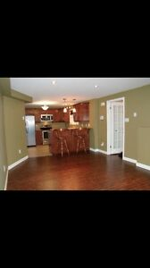 Beautiful 1 Bedroom Apartment (East End/ Airport Heights) St. John's Newfoundland image 2