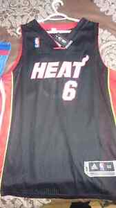 New With Tags LeBron James Jersey
