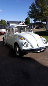 Volts Beetle 1974