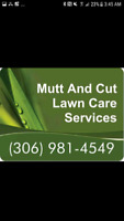 Residential Lawn Care Services  (Starting at $15)
