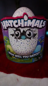 HATCHIMAL