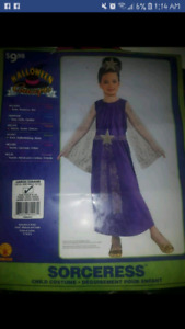 GIRLS SIZE 10/12 SORCERESS COSTUME PICKUP IN THE HANOVER AREA
