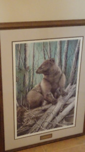 limited edition ''Fisher'' by Judi Wild