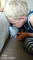 Registered Pet Rat Babies Waiting List Open