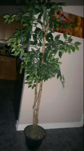 Artificial trees for sale. I HAVE 2.