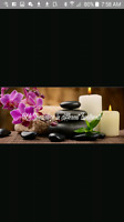 New amazing spa needs  staff and a working or silent partner