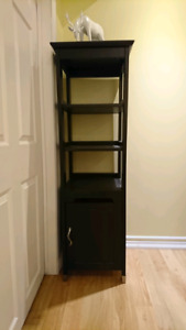 Shelving unit with Cabinet from IKEA