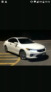 2013-2014 Honda Accord Coupe