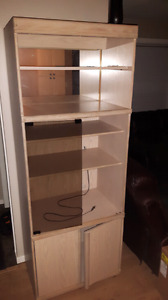 Book cabinet with interior lighting