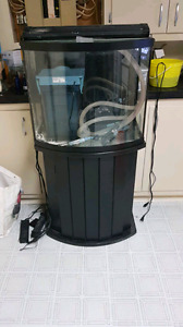 30 gallon bow front