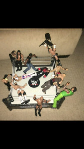 12 WWE Action figures + ring