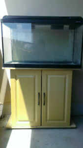 29 Gallon aquarium with Wooden stand for sale.