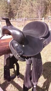Big horn saddle
