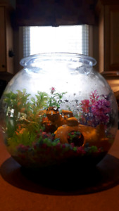 LED light fish bowl with décor
