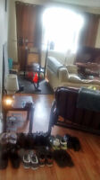 - URGENT - Room for rent in a 2 bdrm apt - UTILITIES INCLUDED -