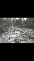 EXPERIENCED CHAINSAW OPERATORS
