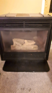 Gas Fireplace Insert $150