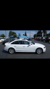 Audi A4 - Low Km! No Accidents!! Priced Well!