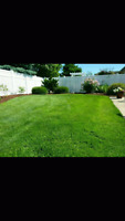 LAWNCARE AND PRESSURE WASHING SERVICES