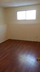 Marlborough renovated bachelor basement suites from 775 util inc