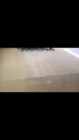 Lee's Cleaning- carpet cleaning