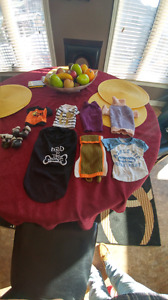 Small assorted dog clothes
