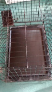 large pet smart fold up dog cage with cleaning tray