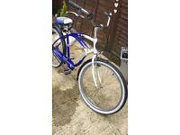 Schwinn cruiser push bike
