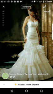 Professionally Dry Cleaned Wedding Dress Gown