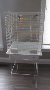 Two Budgies with Cage and Toys