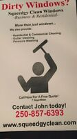 Professional window & gutter cleaning services