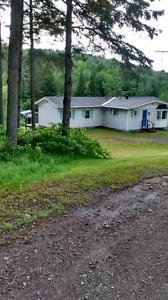 4-Season Cottage / House