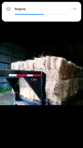 100% grass square bales