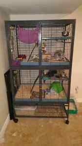 Double Critter Nation Cage with extras