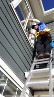 Affordable Reliable Window Cleaning!