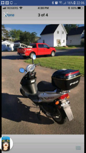 150cc pgo t rex scooter for sale