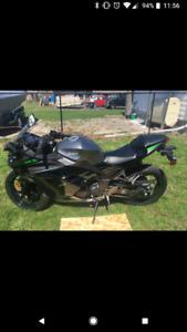 Ninja 300 Motorcycle