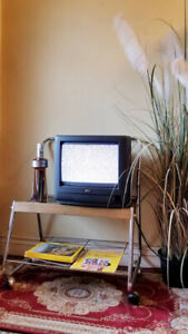 Vintage 1995 Zenith Color Television & Mid Century TV Stand