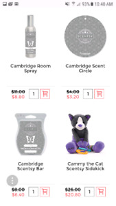 Scentsy clearance!