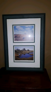 Professionally Framed Prairie Picture