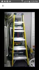 6ft rock river ladder