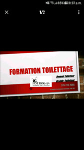 Formation toilettage