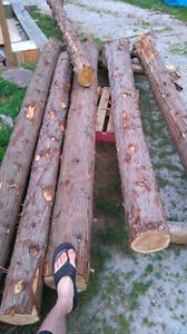 Piquets de cèdre - cedar pickets