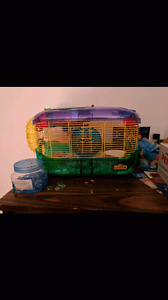 Hampster and accessories forsale!