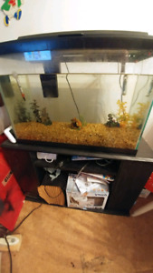 Fish tank for sale sold ppu