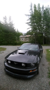 2009 mustang GT 45th anniversary SOLD!