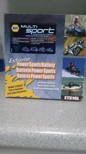 Extreme power sports battery