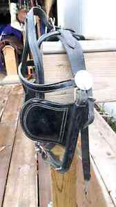 DRIVING BRIDLE