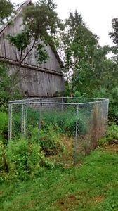 Metal Fence Dog Kennel