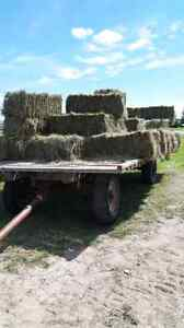 Square bales for sale